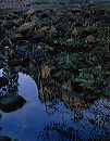 reflections_of_granite